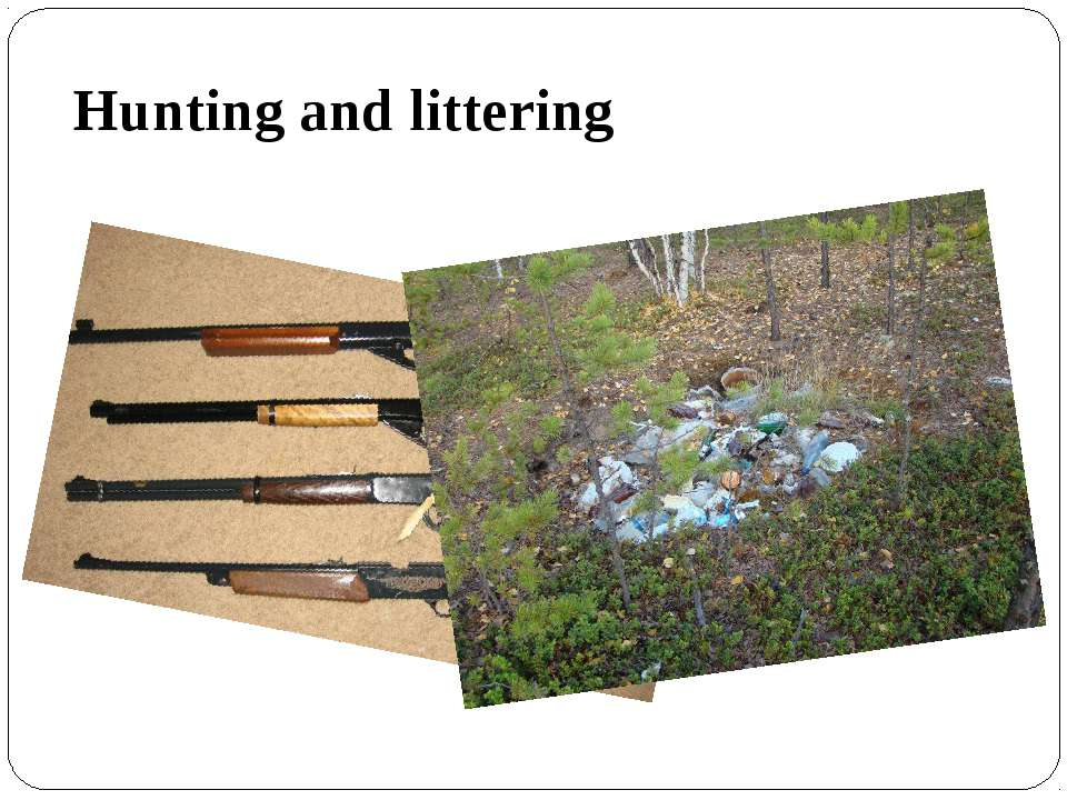 Hunting and littering