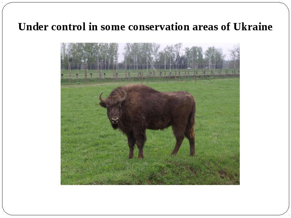 Under control in some conservation areas of Ukraine