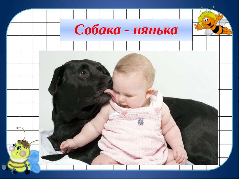 Собака - нянька