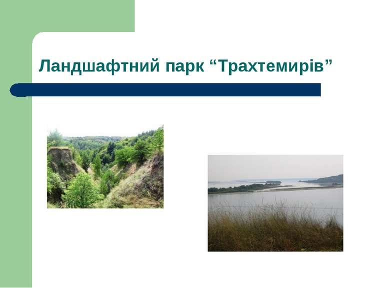 """Ландшафтний парк """"Трахтемирів"""""""