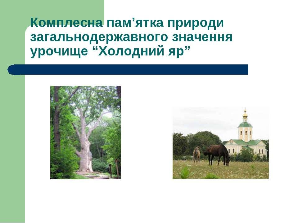 "Комплесна пам'ятка природи загальнодержавного значення урочище ""Холодний яр"""