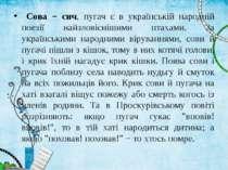 Сова − сич, пугач є в українській народній поезії найзловіснішими птахами. За...