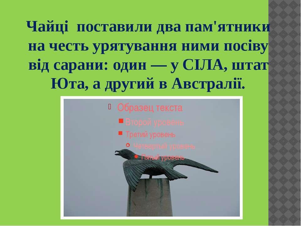 Чайці поставили два пам'ятники на честь урятування ними посіву від сарани: од...