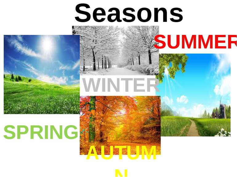Seasons SPRING SUMMER AUTUMN WINTER