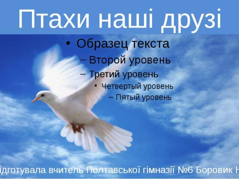 Птахи наші друзі Підготувала вчитель Полтавської гімназії №6 Боровик Н.О. Пта...