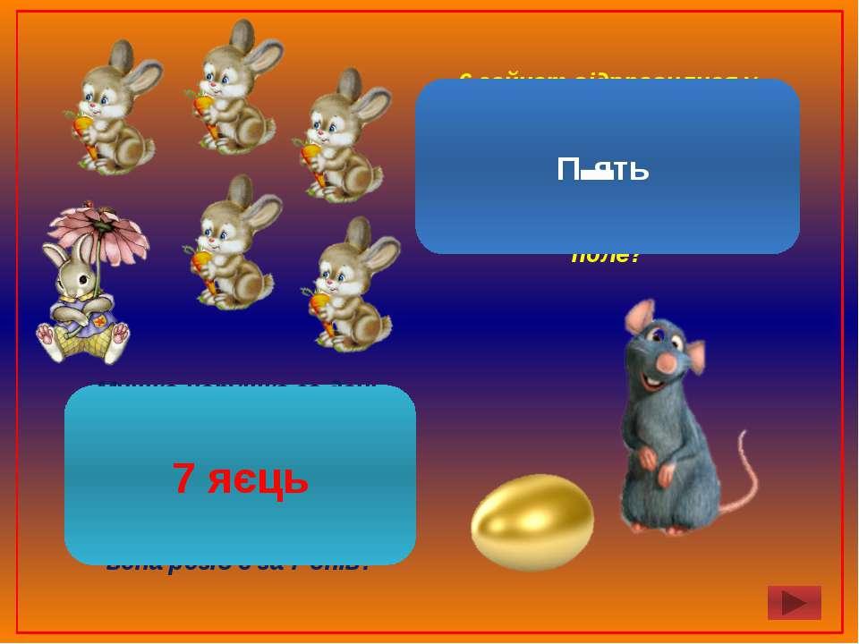 Мишка-норушка за день розбиває одне золоте яйце, засмучуючи при цьому діда й ...
