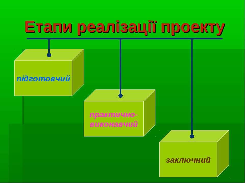 Етапи реалізації проекту підготовчий практично- виконавчий заключний