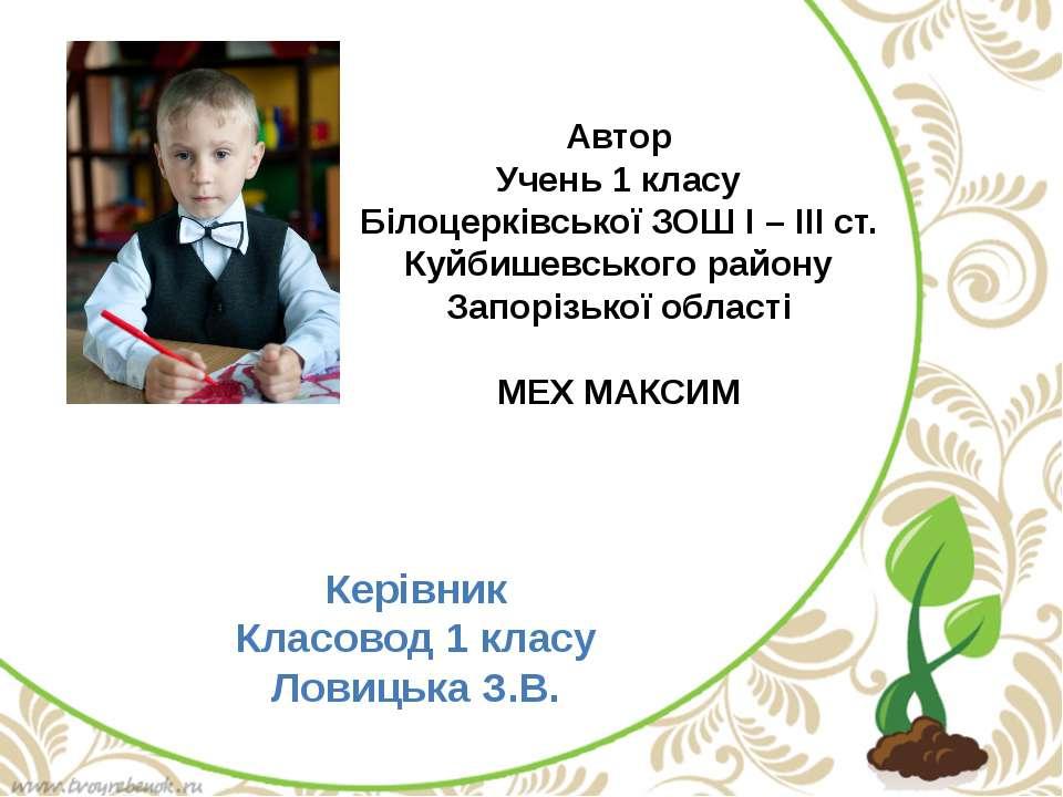 Автор Учень 1 класу Білоцерківської ЗОШ І – ІІІ ст. Куйбишевського району Зап...