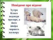 Невідоме про відоме Хутро білого ведмедя прозоре, а його шкіра чорного кольору