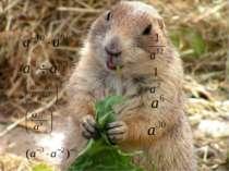 Математичне лото 1 3 2 4 е б о р 5