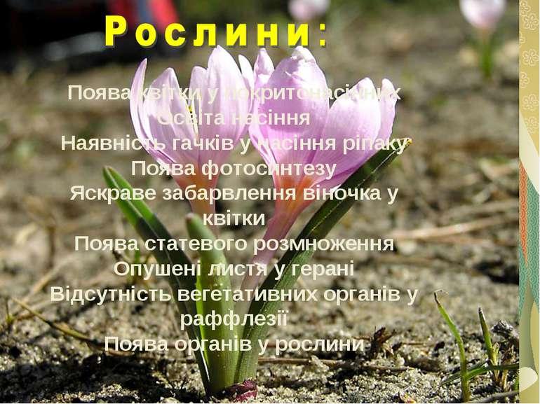 Поява квітки у покритонасінних Освіта насіння Наявність гачків у насіння ріпа...