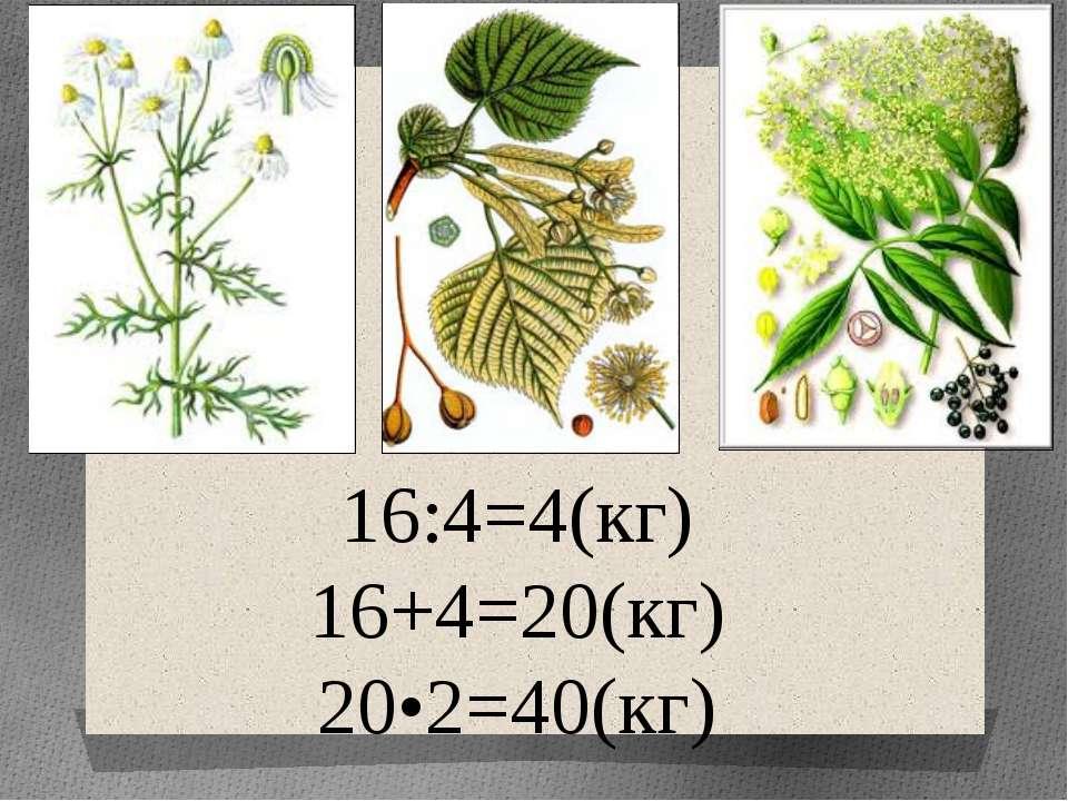 16:4=4(кг) 16+4=20(кг) 20•2=40(кг)
