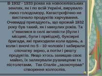 В 1932 - 1933 роках на новоселівських землях, як і по всій Україні, вирувало ...