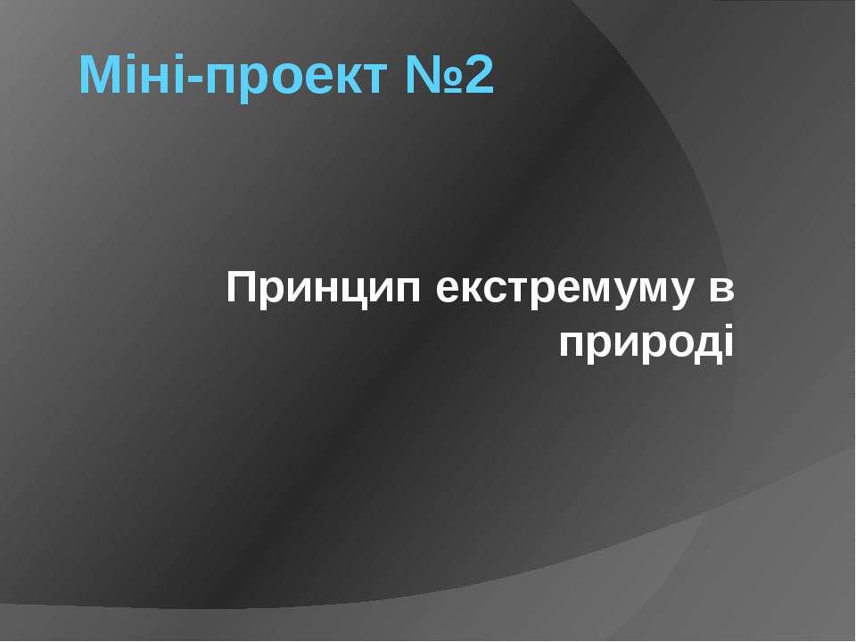 Міні-проект №2 Принцип екстремуму в природі