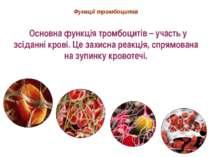 Функції тромбоцитів Основна функція тромбоцитів – участь у зсіданні крові. Це...