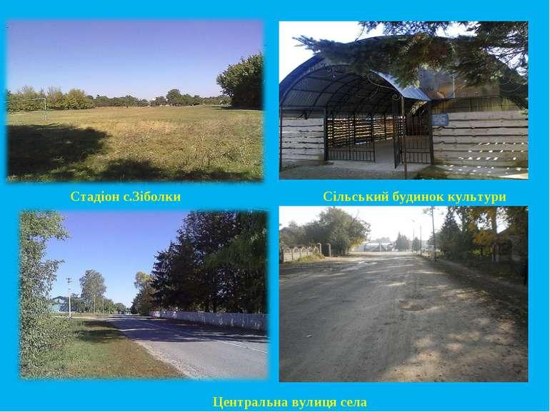 Стадіон с.Зіболки Сільський будинок культури Центральна вулиця села