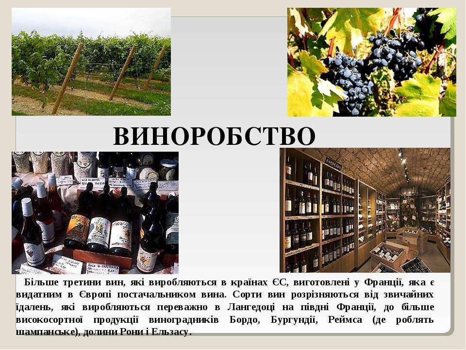 ВИНОРОБСТВО Більше третини вин, які виробляються в країнах ЄС, виготовлені у ...