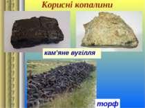 Корисні копалини кам'яне вугілля торф