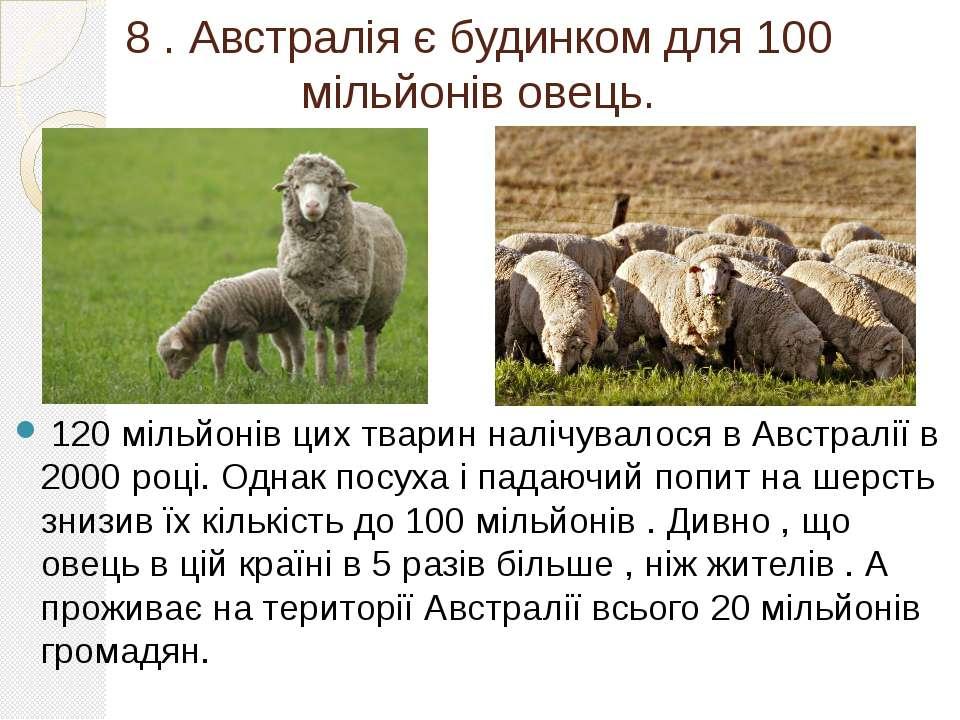 8 . Австралія є будинком для 100 мільйонів овець. 120 мільйонів цих тварин на...