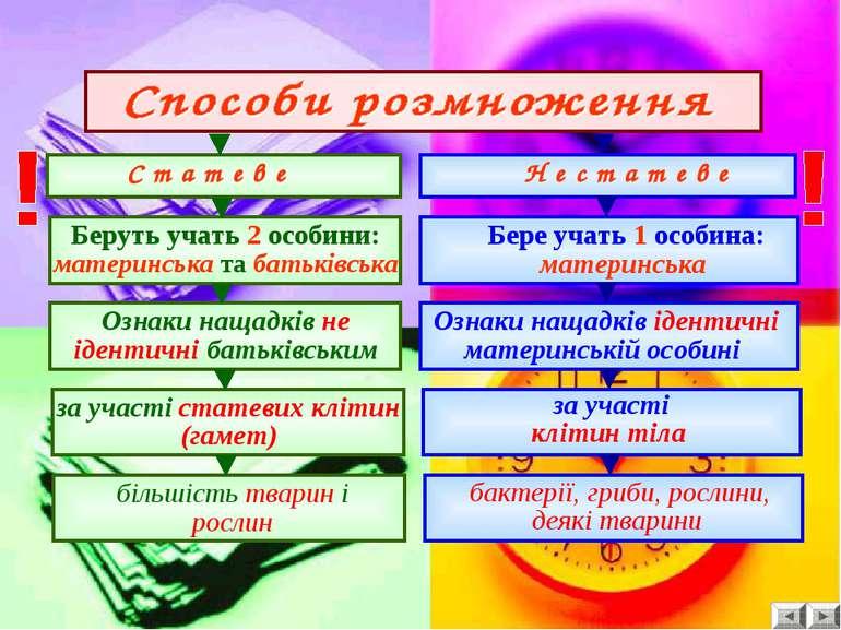 С т а т е в е Н е с т а т е в е Беруть учать 2 особини: материнська та батькі...