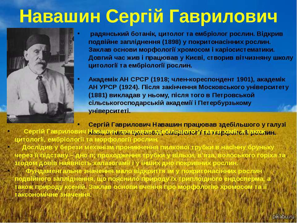 Навашин Сергій Гаврилович радянський ботанік, цитолог та ембріолог рослин. Ві...