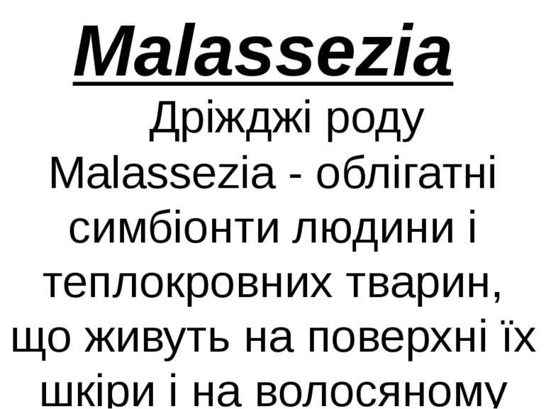 Дріжджі роду Malassezia - облігатні симбіонти людини і теплокровних тварин, щ...