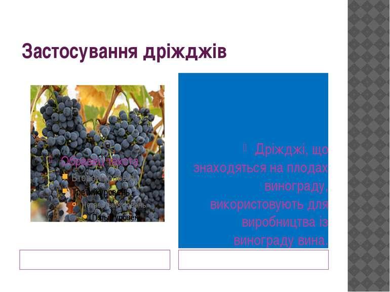 Застосування дріжджів Дріжджі, що знаходяться на плодах винограду, використов...