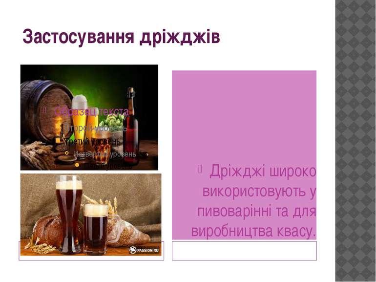 Застосування дріжджів Дріжджі широко використовують у пивоварінні та для виро...