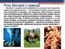 Роль бактерій у природі
