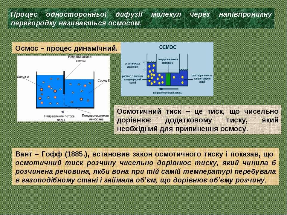 Процес односторонньої дифузії молекул через напівпроникну перегородку називає...