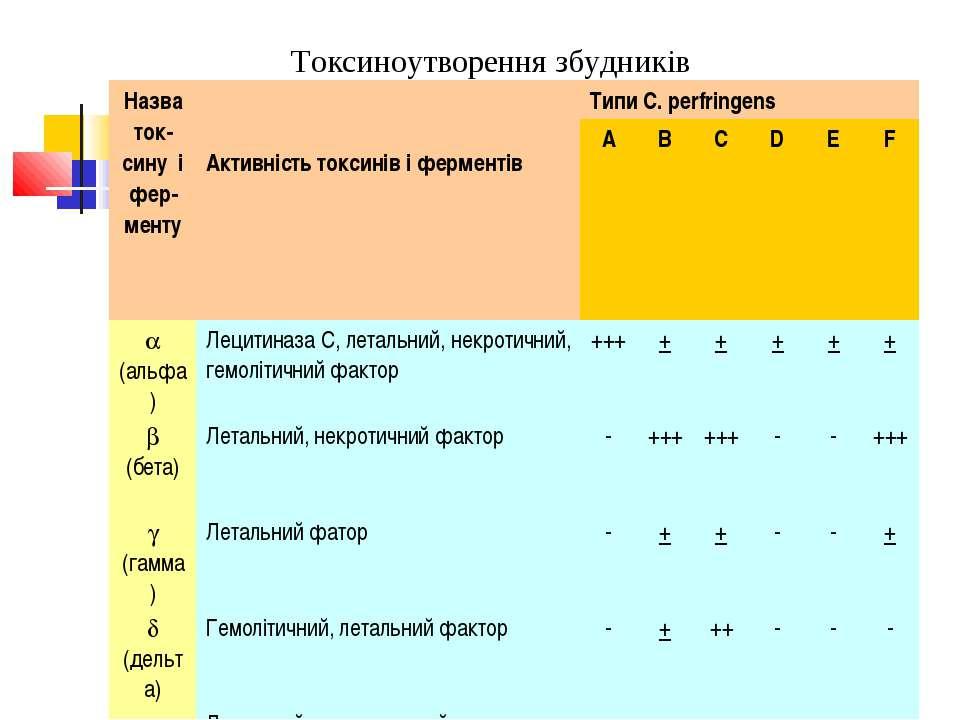 Токсиноутворення збудників Назва ток-сину і фер-менту Активність токсинів і ф...