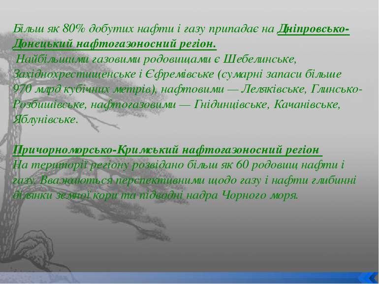 Більш як 80% добутих нафти і газу припадає на Дніпровсько-Донецький нафтогазо...