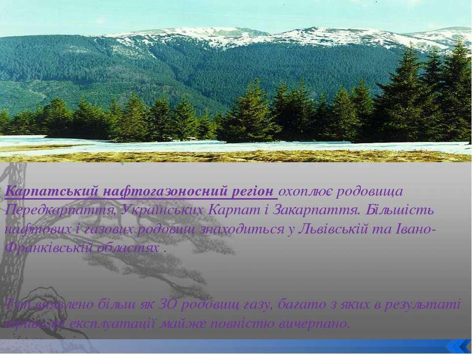Карпатський нафтогазоносний регіон охоплює родовища Передкарпаття, Українськи...