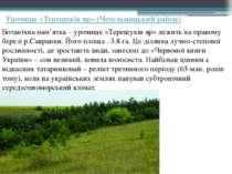 Урочище «Терещуків яр» (Чечельницький район) Ботанічна пам'ятка – урочище «Те...
