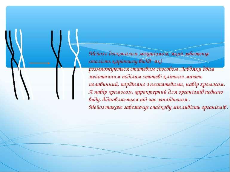 Мейоз є досконалим механізмом, який забезпечує сталістькаріотипу видів які р...