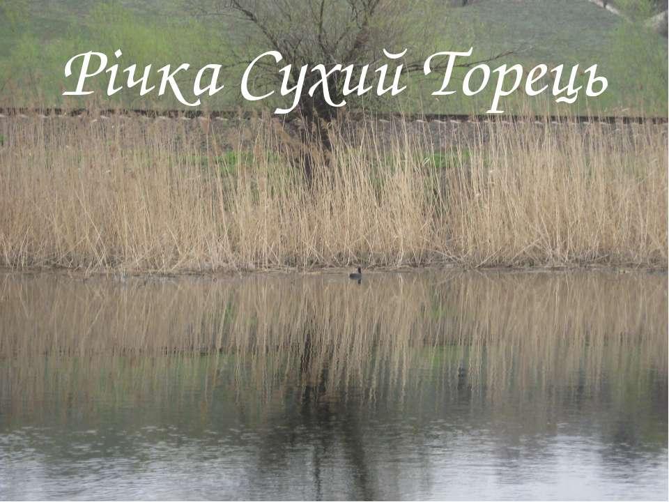 Річка Сухий Торець