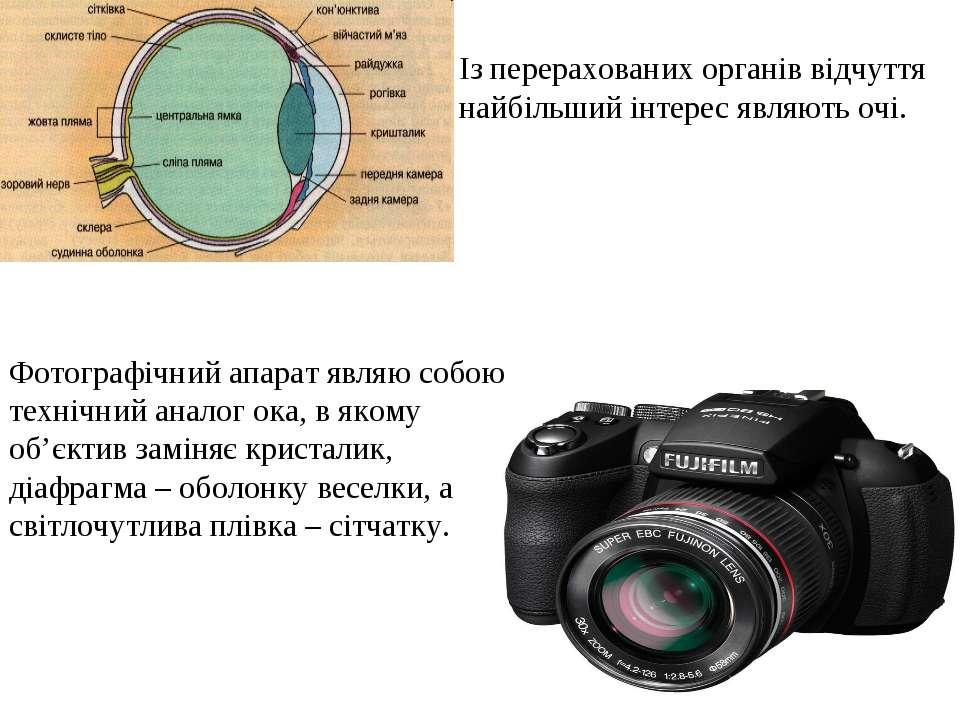 Фотографічний апарат являю собою технічний аналог ока, в якому об'єктив замін...