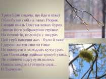 Тризуб (як сокола, що йде в піке) Облюбував собі на лавах Рюрик. І віщий княз...