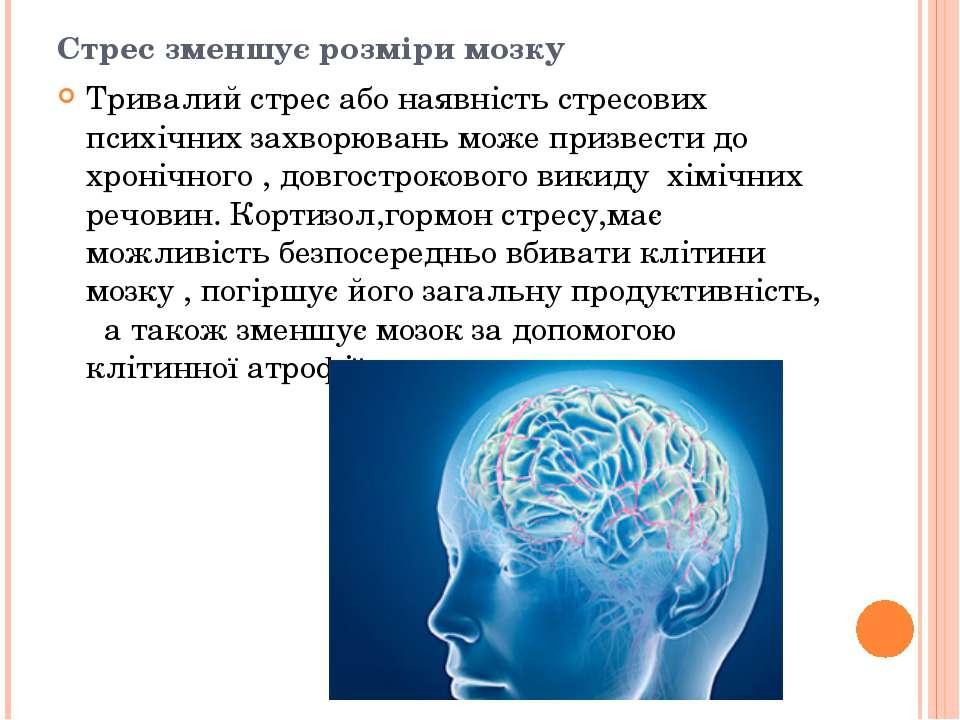 Стрес зменшує розміри мозку Тривалий стрес або наявність стресових психічних ...
