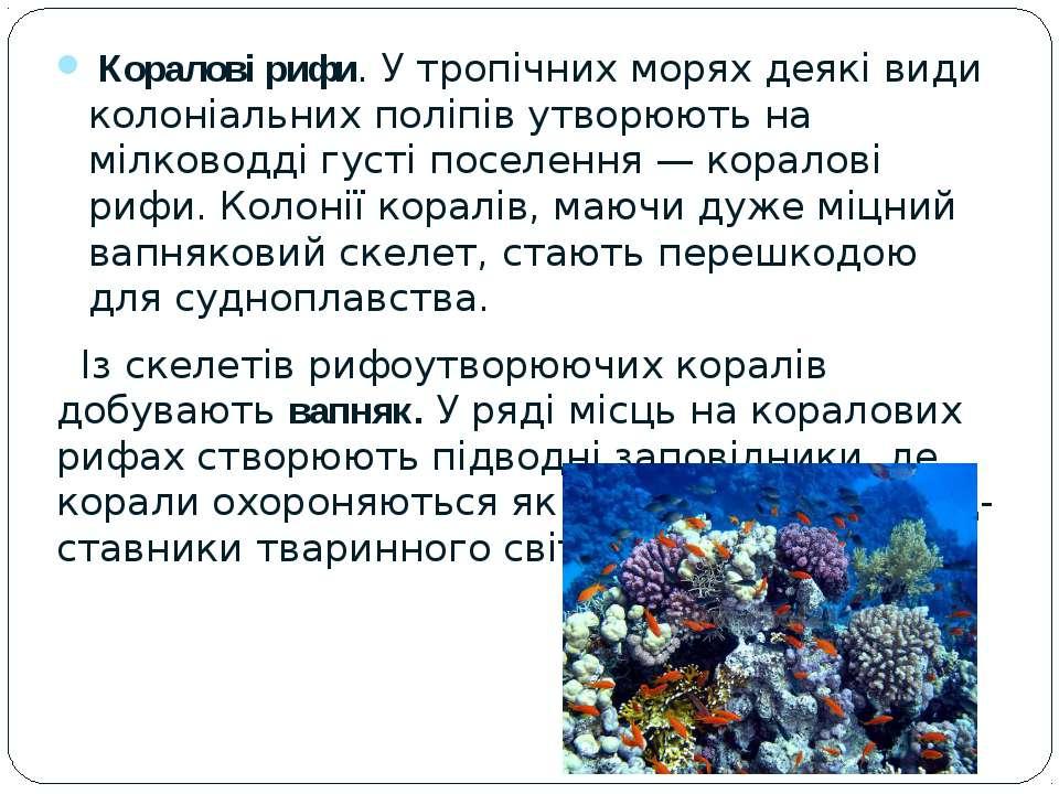 Коралові рифи. У тропічних морях деякі види колоніальних поліпів утворюють на...