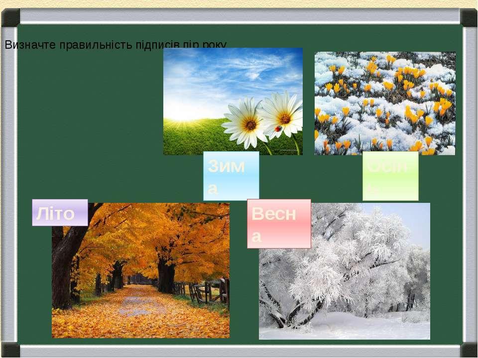 Зима Осінь Літо Весна