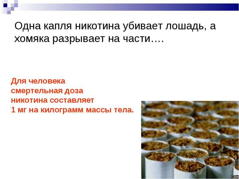 Одна капля никотина убивает лошадь, а хомяка разрывает на части…. Для человек...