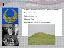 """Скіфський курган """"Товста могила"""" Адреса:Дніпропетровська обл., Нікопольський..."""