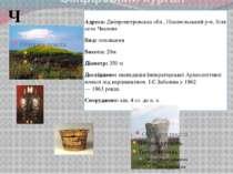 Скіффський курган Чортомлик Адреса:Дніпропетровська обл., Нікопольський р-н,...