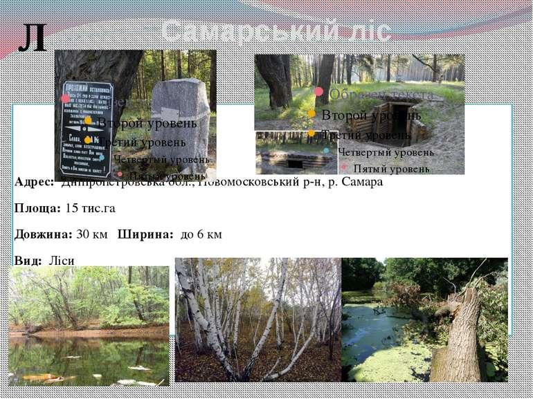Самарський ліс Адрес: Дніпропетровська обл., Новомосковський р-н, р. Самара ...