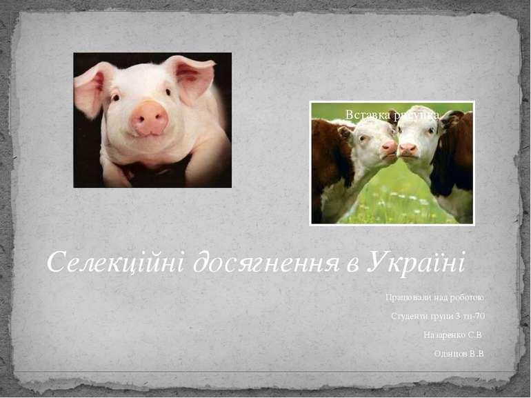 Селекційні досягнення в Україні Працювали над роботою Студенти групи 3 тп-70 ...