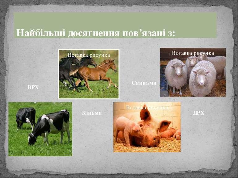 ВРХ Кіньми Свиньми ДРХ Найбільші досягнення пов'язані з: Заголовок раздела По...