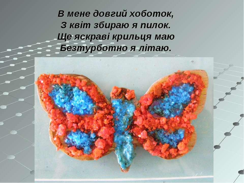 В мене довгий хоботок, З квіт збираю я пилок. Ще яскраві крильця маю Безтурбо...