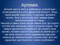 Артемія. Артемія здатна жити в неймовірно солоній воді і розмножуватися в ній...