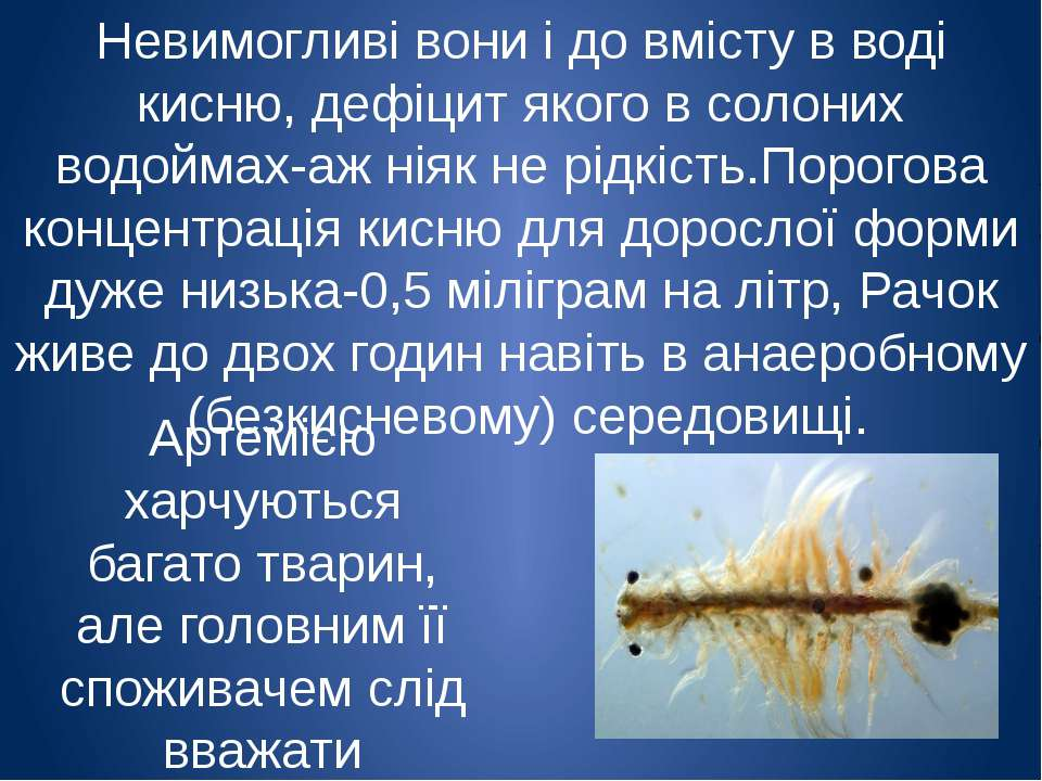 Невимогливі вони і до вмісту в воді кисню, дефіцит якого в солоних водоймах-а...